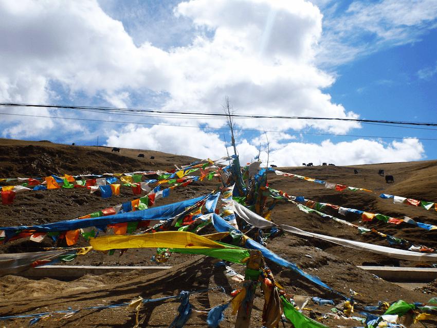 Prayer Flags Litang Tibet China