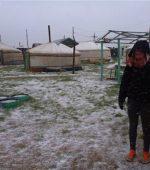 Ger Mongolia Snow