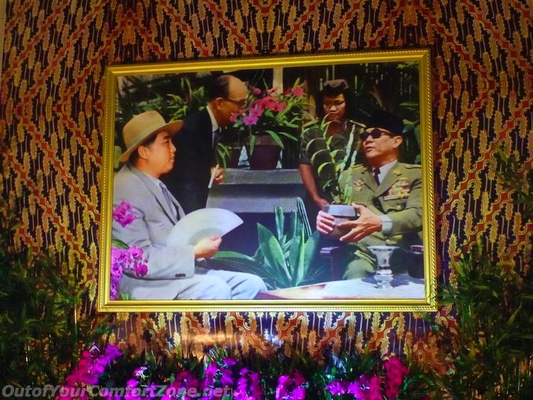 North Korea funny photoshop kimilsungia