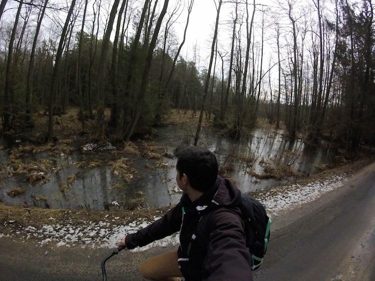 Belovezhskaya-Pushcha-National-Park-Biking