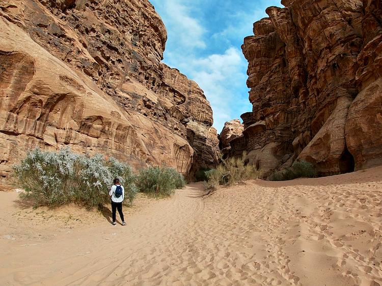 Canyon Wadi Rum