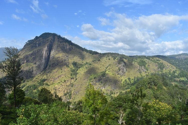 Best Things to Do in South Sri Lanka